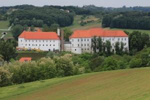 Castle Hrastovec with fields