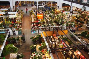 The flower stalls in The Market Hall