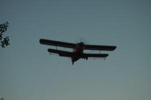 The Antonov bi-plane (or so I was told)