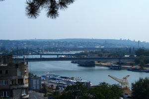Bridges across the Sava